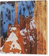 Bryce Canyon Winter 4 Wood Print