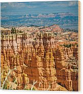 Bryce -tall Wood Print
