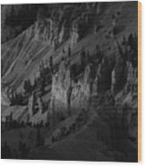 Brycecanyon 10 Wood Print