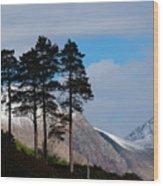 Buachaille Etive Mor From Glen Etive Wood Print