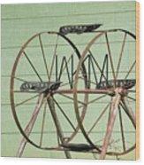 Bubbas  Fairs Wheel Wood Print