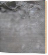 Bubble Bloom Wood Print