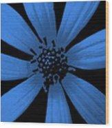 Bubble Blue Wood Print
