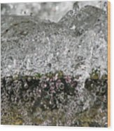 Bubble Falls Wood Print
