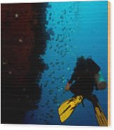 Bubbles And Butterfly Fish Wood Print