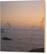 Bubbles On The Beach Wood Print