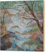 Bubbling Falls Wood Print