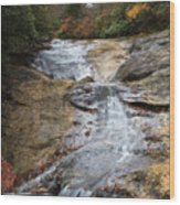 Bubbling Spring Branch Cascades Wood Print