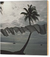 Buca Bay, Laundry And Palm Trees Wood Print by James L. Stanfield