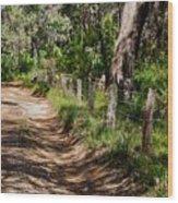 Walking With God Wood Print