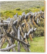 Buck And Rail Fence In The High Country Wood Print