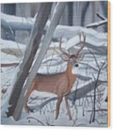 Buck In The Snow Wood Print