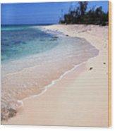Buck Island Beach Wood Print