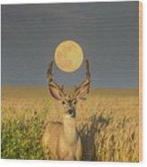 Buck Moon  Wood Print