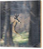 Buck Running Thru The Woods Wood Print