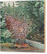 Buckeye And Redwoods Wood Print