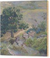 Buckhorn Canyon Wood Print