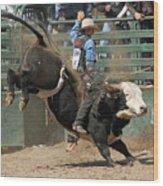 Bucking Bulls 101 Wood Print by Cheryl Poland