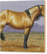 Buckskin Mustang Stallion Wood Print by Crista Forest
