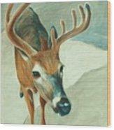 Bucky Wood Print