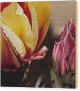 Bud To Blossom Wood Print