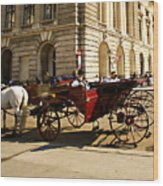 Vienna Buggy Man Wood Print
