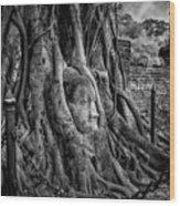 Buddha Head Ayutthaya Wood Print