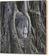 Buddha Head In Tree Wood Print by Adrian Evans