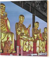 Buddhas Delight - Representations Of Buddhism Wood Print