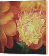 Budding Dahlia Wood Print