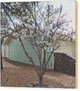 Budding Fruit Tree Wood Print