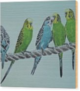 Budgie Buddies Wood Print
