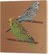 Budgies Wood Print