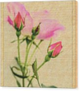 Buds And Bloom - Rose Floral Wood Print