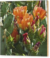 Buds N Blossoms Wood Print
