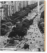 Buenos Aires Wood Print