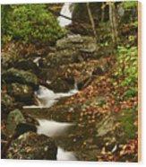 Buff Creek Falls Wood Print
