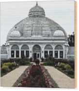 Buffalo And Erie County Botanical Gardens Ink Sketch Effect Wood Print