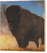 Buffalo At Dawn Wood Print