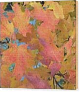 Buffalo Fall Leaves Wood Print