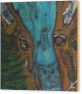 Buffalo Falls -033 Wood Print