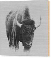 Buffalo Gal Wood Print