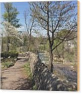 Buffalo Glen Park Williamsville Wood Print