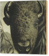 Buffalo Head Wood Print
