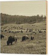 Buffalo Hill Wood Print