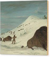 Buffalo Lancing In The Snow Drifts. Sioux Wood Print