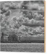 Buffalo Lighthouse 8111 Wood Print