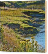 Buffalo River Bank Wood Print