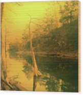 Buffalo River In Gold Wood Print