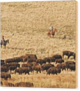 Buffalo Roundup Wood Print